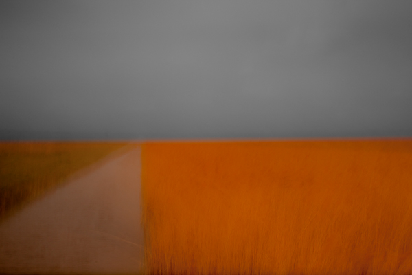 ©Chris Friel