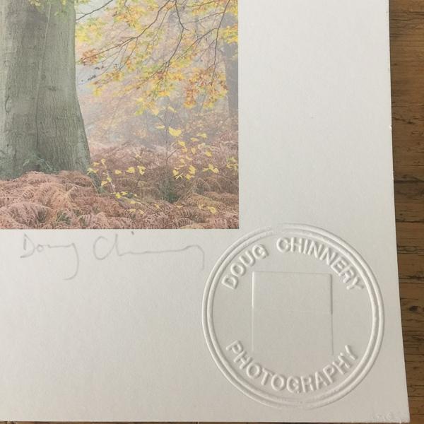 My 'blind stamp' logo