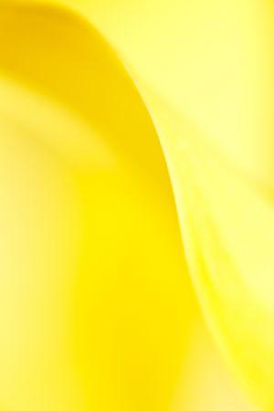20091128-200M0217-Edit.jpg