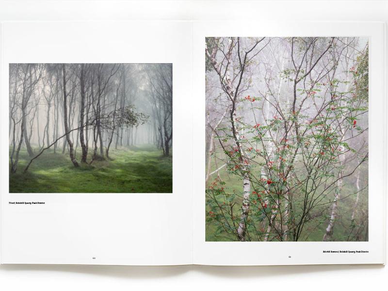 With Trees, Dav Thomas